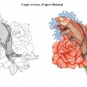 carpe-roses-aline-gradelet-weclewicz