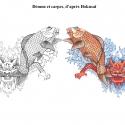 carpes-demon-aline-gradelet-weclewicz